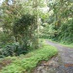 Road leading to Deshadan