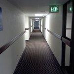 Clean halls