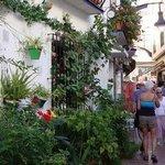 Calle Bajondillo Nº4