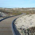 Beautiful boardwalk along the dunes