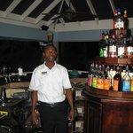 Junior at the Bar