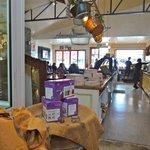 Salute - delicious Italian food in this deli in Taupo