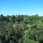 View from 8th floor (10 floor hotel) room