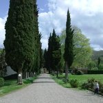 Villa Campestri 3