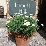 It's always sunny at Linnett Hill!