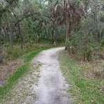 trail to fishing pier