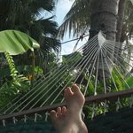 Chillin' in the hammock