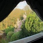 Chambre bleu: vue vers le jardin