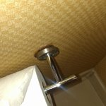 Broken Toilet Tissue Holder