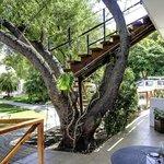 GUBAS-DEHOEK garden room 8 terrace