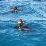 Successful Discover Scuba Open Water