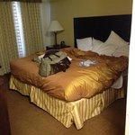 Homewood Suites by Hilton Austin South Foto
