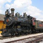 Grapevine steam engine