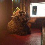 Buffalo Head At Bullwinkles