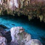 Detalle del cenote