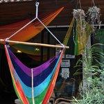 beautiful handmade hammocks