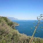 Auf der Wanderung (Halbinsel Penna / Mortella)