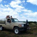 Wildtierfütterung und Beobachtung