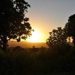 Sonnenaufgang auf Plumbago