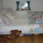 The double bed - very comfy and adequate for me and hubby - both 6ft