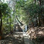 Monkey park start of trek