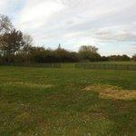 Field behind lodge again