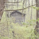 A hidden shack
