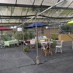 Glasshouse tea area