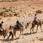 Israel Travel Company - Day Tours
