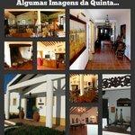 Foto de Quinta dos Amarelos