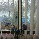 Frosted glass in the window and plastic flowers
