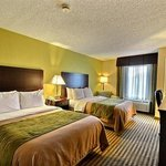 Comfort Inn & Suites St. Pete/Clearwater Airport