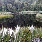 Reflections on Lake Matheson