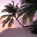 Hamza island