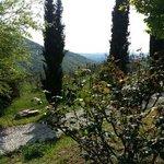 Photo of Agriturismo Verde Oliva