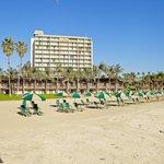 Beach at The Catamaran Resort Hotel