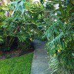 walkway to our front door