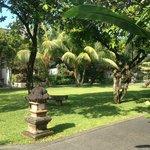Beautiful Resort Gardens
