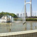 公園内にかかる「木場公園大橋」越しに見える東京スカイツリー。肉眼ではもっと大きく見えます。