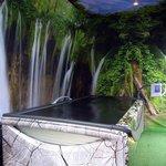 Dreamwater Lounge