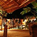 Honeybear Beach Bar and Venue