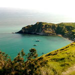 Lulworth Cove from Bindon Hill
