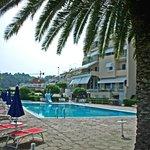 L'hotel dalle palme trentennali