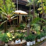 shop and garden