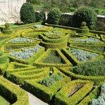 Box Hedge herb garden