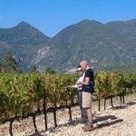 Rhone Wine Tours