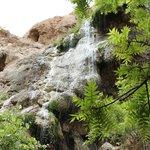 refuge under the falls
