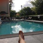 Poolside at the Hampton