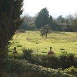 View from Daresbury