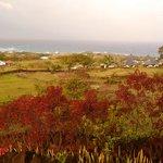 Vista desde la terraza de la Cabaña Mana Ora